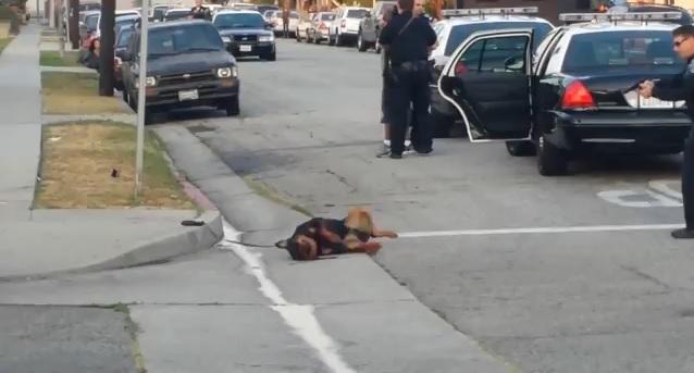 policia-mata-a-tiros-perro-rottweiler