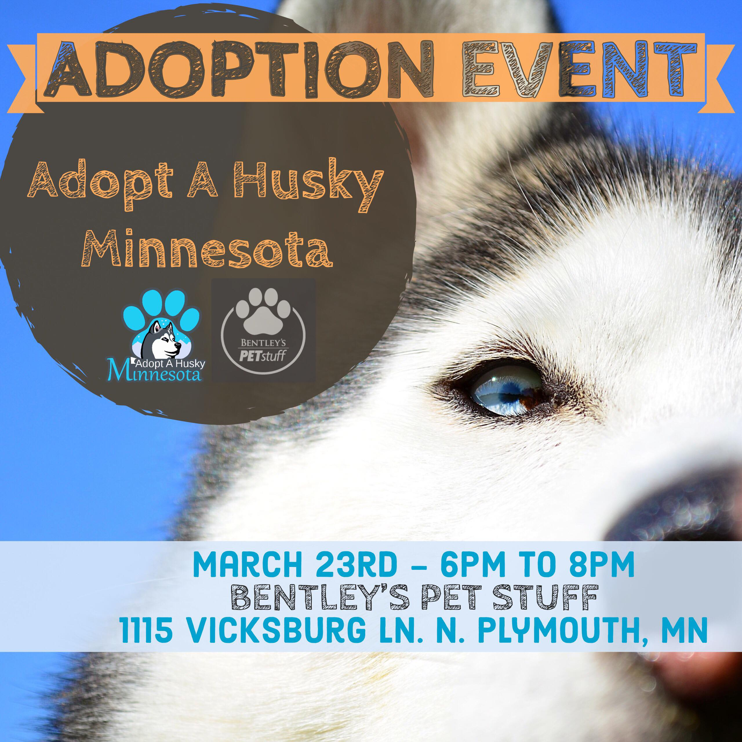 Meet greet at bentleys pet stuff adopt a husky minnesota join adopt a husky minnesota and bentleys pet stuff in plymouth for a meet greet with some of our available foster dogs well also have the latest aahmn m4hsunfo