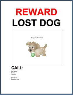 Adopt A Pet Com Blog Free Template Lost Or Found Pet Flyer