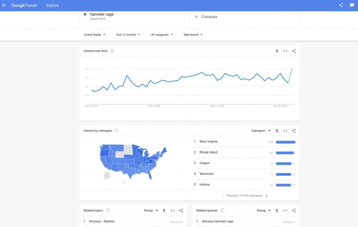 Google Trends Screen Print