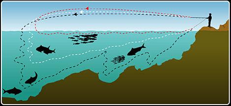 Jig ile Balık Avı Teknikleri