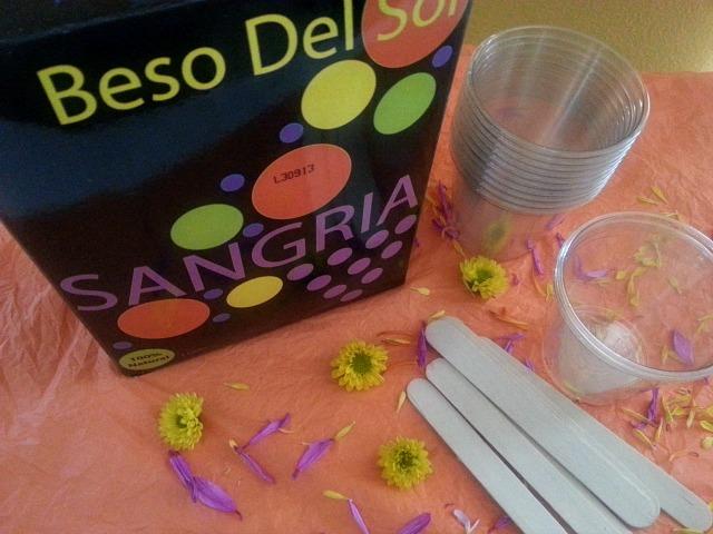Ingredients to prepare the Sangria Ice Pops #BesoDelSol