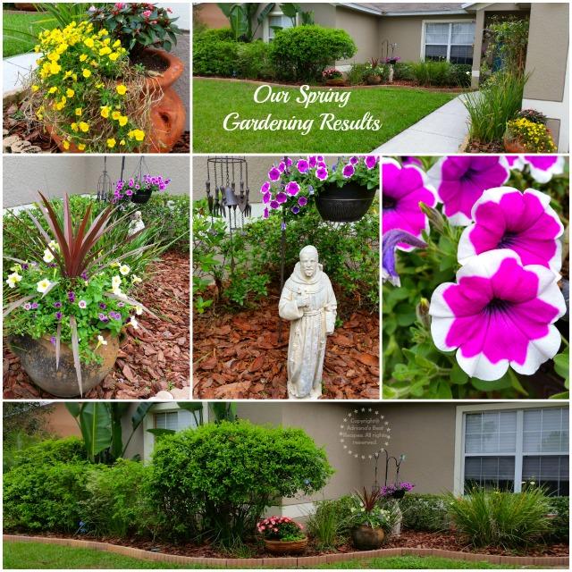 Our Spring Gardening Results #MiJardinalidad #ad