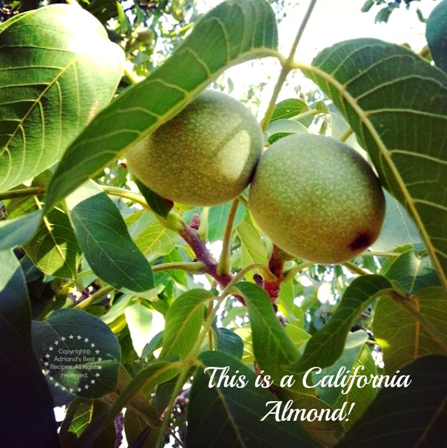 This is a California Almond #TASTE14