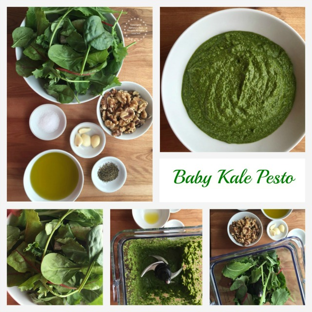 Baby Kale Pesto Ingredients and Process