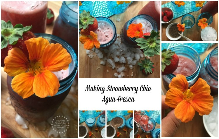 Making Strawberry Chia Agua Fresca