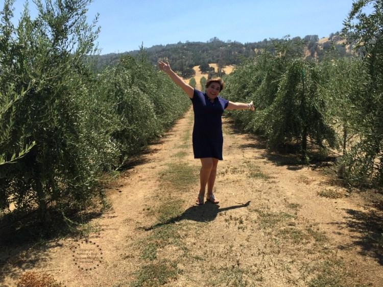 Visiting Capay Valley Ranches