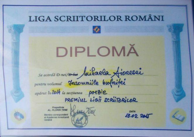 diploma-11