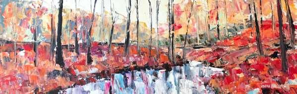Crawfordsburn Forest