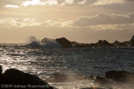 Half-Tide-Rock-Wave