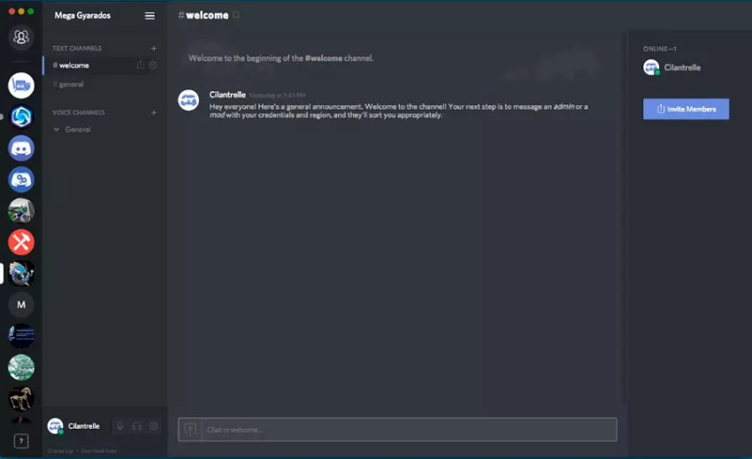 Discord user interface