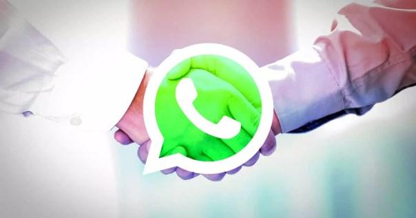 whatsapp contrato