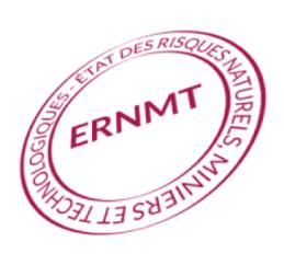 ERNMT