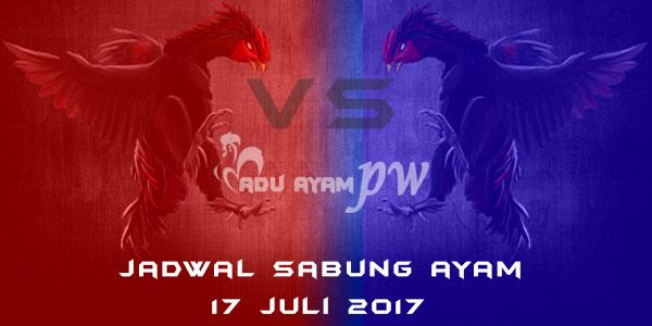 jadwal sabung ayam 17 juli 2017