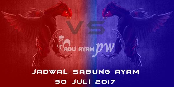 jadwal sabung ayam 30 juli 2017