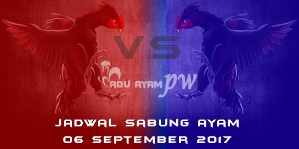 jadwal sabung ayam 06 September 2017