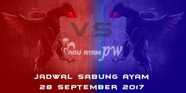 jadwal sabung ayam 28 September 2017