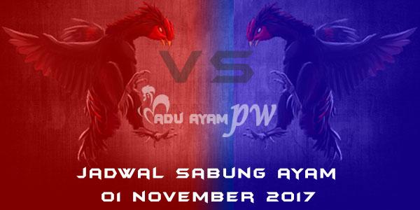 jadwal sabung ayam 01 November 2017