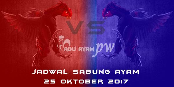 jadwal sabung ayam 25 Oktober 2017