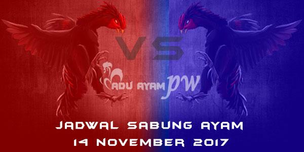 jadwal sabung ayam 14 November 2017