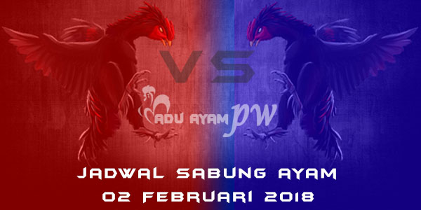 jadwal sabung ayam 02 Februari 2018