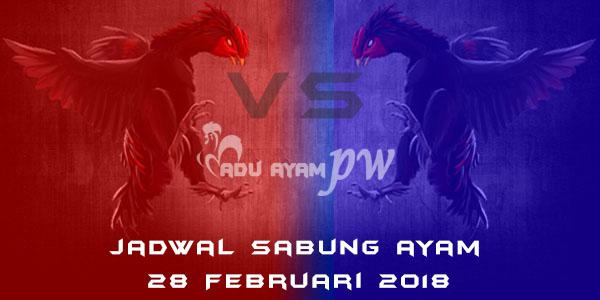 jadwal sabung ayam 28 Februari 2018