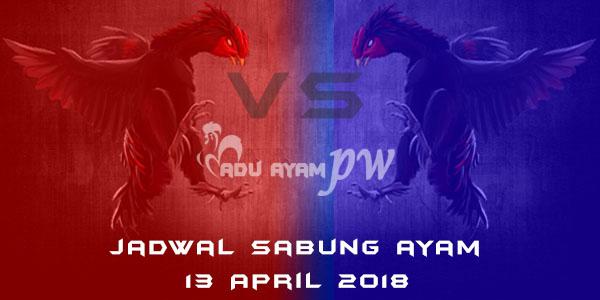 jadwal sabung ayam 13 April 2018