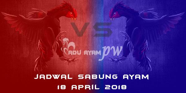 jadwal sabung ayam 18 April 2018