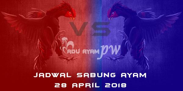jadwal sabung ayam 28 April 2018