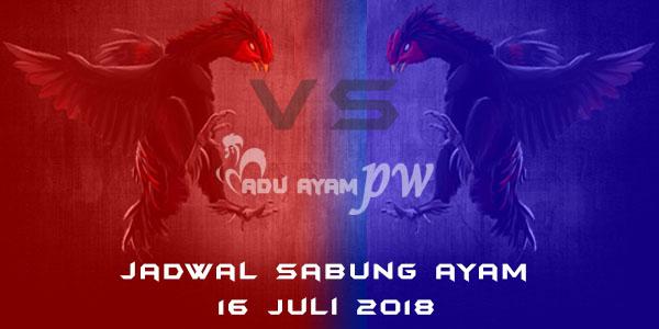 Jadwal Sabung Ayam 16 Juli 2018