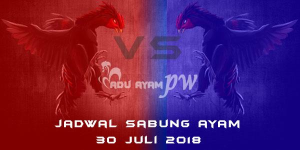 Jadwal Sabung Ayam 30 Juli 2018