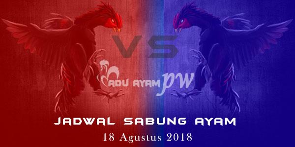 Jadwal Sabung Ayam 18 Agustus 2018