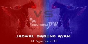 Jadwal Sabung Ayam 14 Agustus 2018