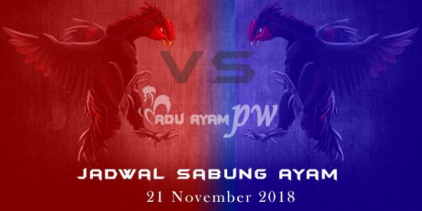 Jadwal Sabung Ayam 21 November 2018