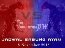 Jadwal Sabung Ayam 8 November 2018