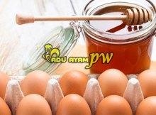 Manfaat Dari Telur Ayam Dan Madu Untuk Ayam Birma