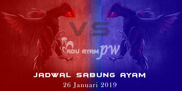 Jadwal Sabung Ayam 26 Januari 2019