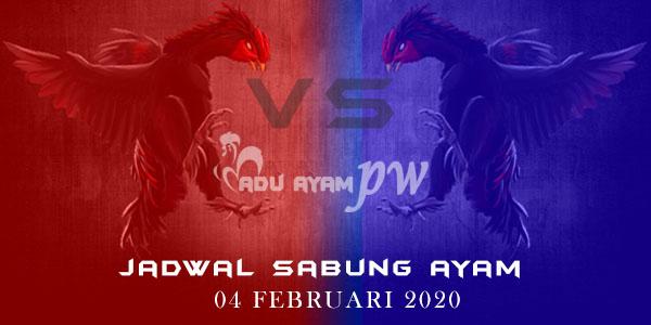 Jadwal Pertandingan Adu Ayam Online 04 Februari 2020