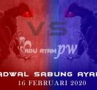 Prediksi Dan Jadwal Resmi Tarung Ayam 16 Februari 2020