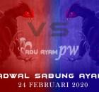 Jadwal Online Sabung Ayam Live Terbaik 24 Februari 2020