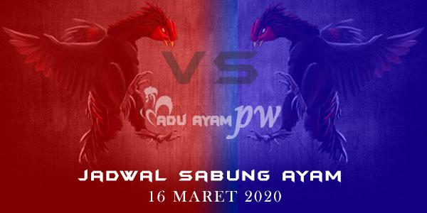 List Jadwal Sabung Ayam Live 16 Maret 2020