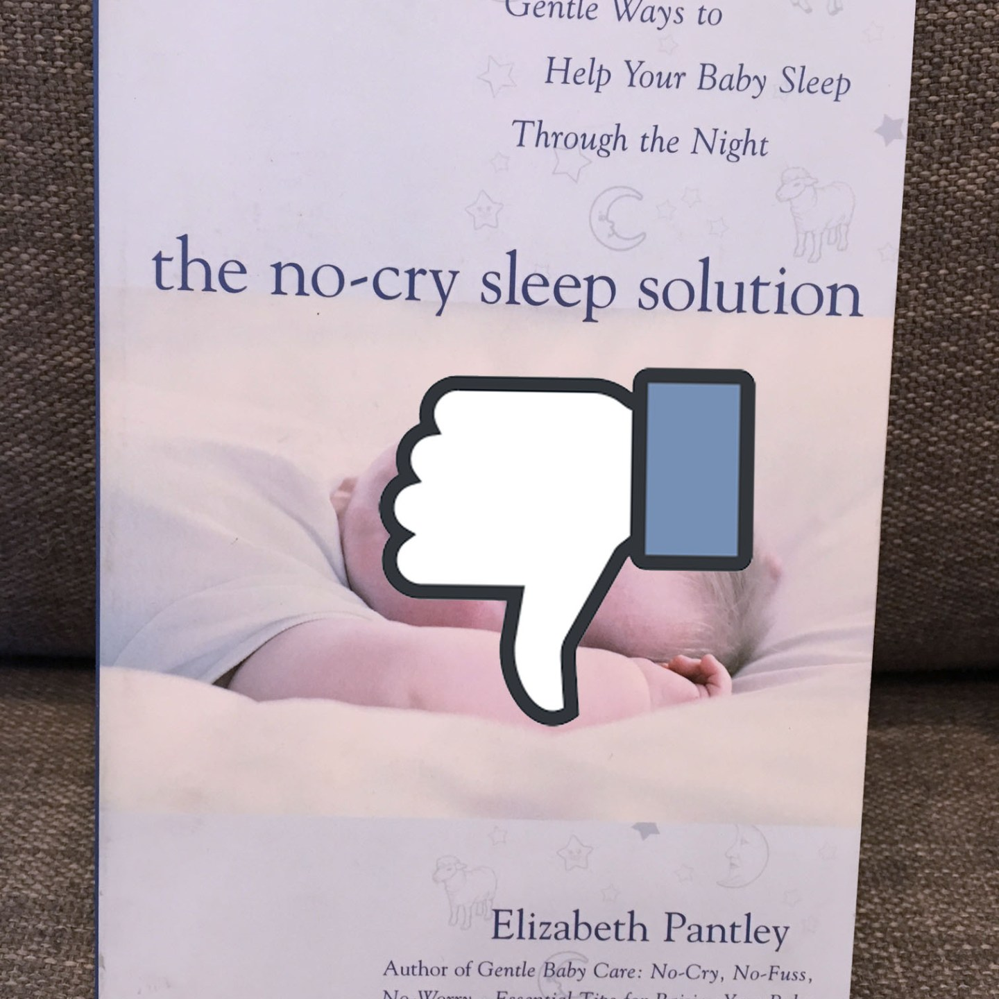 Why Baby Sleep Books Can Suck It