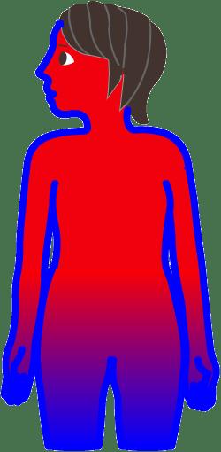 肌から熱が逃げにくくなると上半身に熱がこもり、炎症・化膿の大人ニキビが出来やすくなります