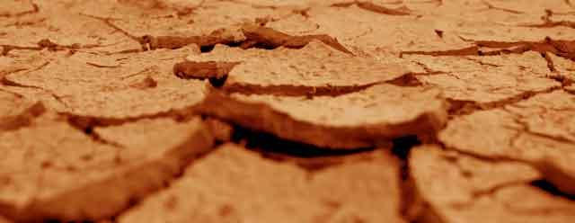 乾燥肌なのに皮脂が出てテカる肌・オイリー肌・ニキビ肌
