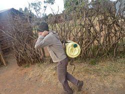 Vesna Masai 2