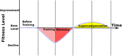 supercompensation-diagram
