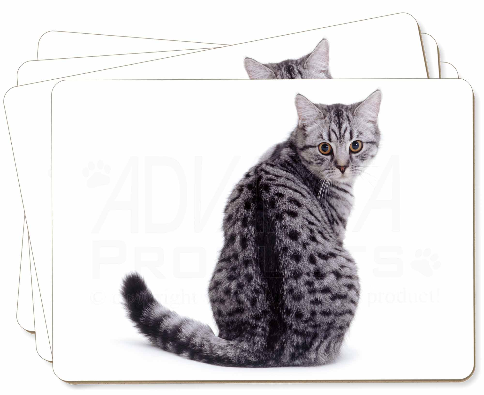 Silver Spot Tabby Cat Picture Placemats In T Box Ac