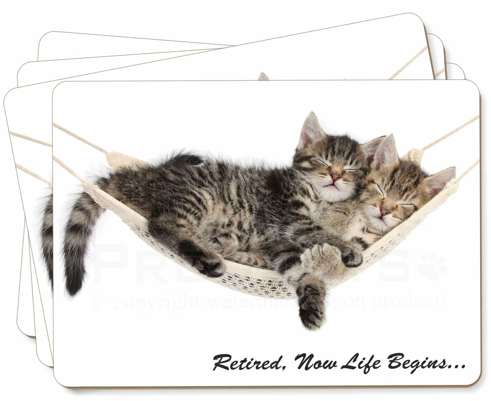 Cats In Hammock Retirement T Picture Placemats In T
