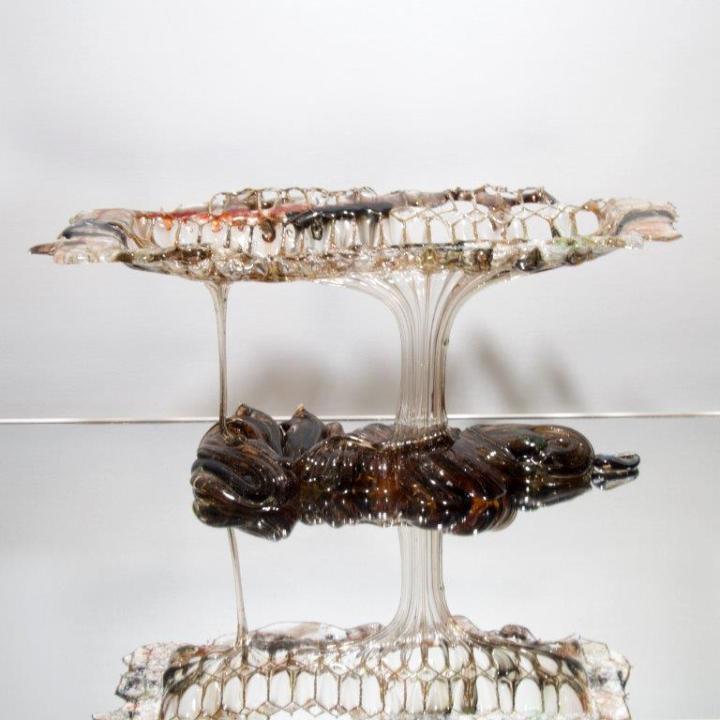 Glassdrip Les Baobobs