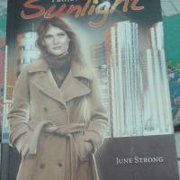 p.projeto-sunlilghtng